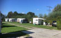 kampeerveld met heggen