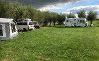kampeerveld