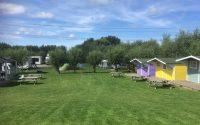ruim grasveld bij de hutten